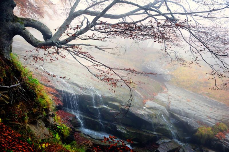 autumn_20.jpg