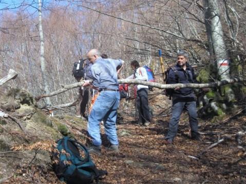 2012-03-31-I^-Giornata-Sentieri-Selva-Grande-3.jpg