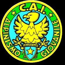 ALPINISMO GIOVANILE  –  ARRAMPICATA in PALESTRA  * 20 gennaio 2013 *