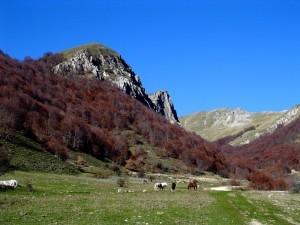Monte Pozzoni – Intersezionale [18 Ottobre 2015]