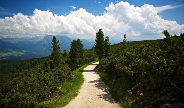 sentiero-circolare-panoramico-bambini-in-montagna.jpg