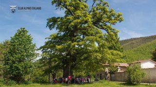 """""""A scuola con il CAI"""": grande successo nella giornata conclusiva del progetto scolastico di sensibilizzazione naturalistica ed alpinistica"""