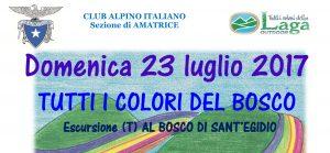 Escursione 23 luglio 2017 TAM e AG al Bosco di S.Egidio @ Bosco di S.Egidio