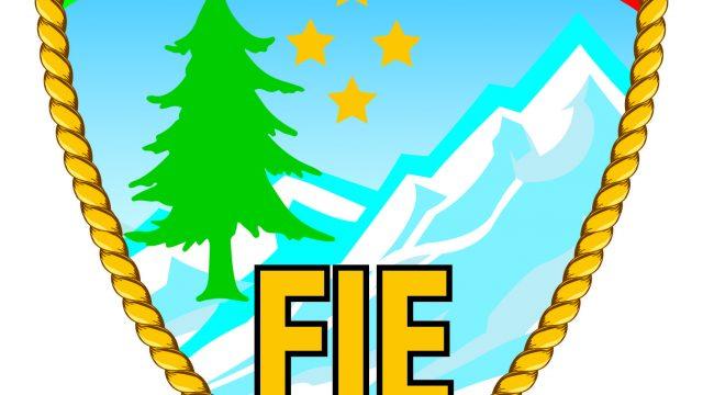 Logo_F.I.E._2015-1.jpg