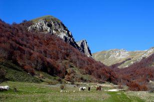Monte Pozzoni [22 Aprile 2018]
